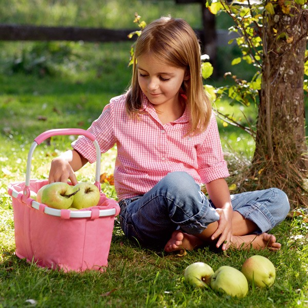 Pink Small indkøbskurv / picnickurv Carrybag XS